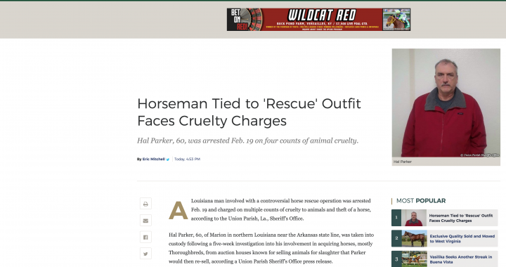 BLOODHORSE: Horseman Tied to 'Rescue' Outfit Faces Cruelty Charges